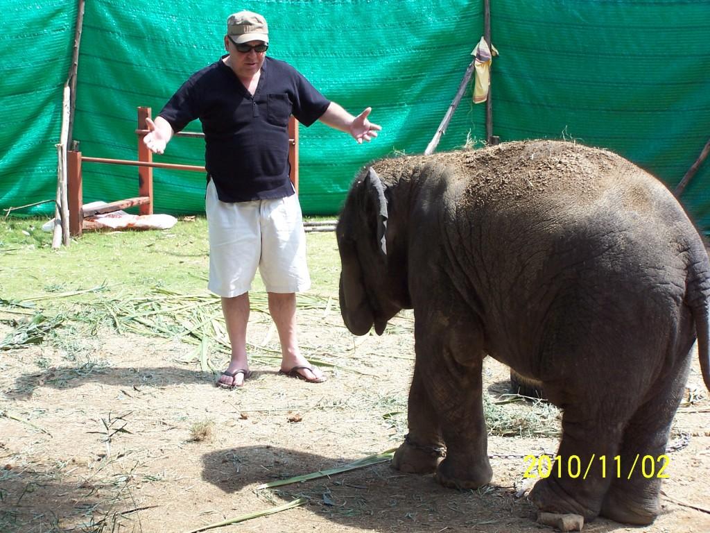 слоны Тайлонда,фото Тайланда, шоу слонов