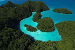 Палау, Острова, островов, кораллов, году, мировой, Морские, является, видов, Второй, поэтому, некоторые, наиболее, синий, очень, остров, экосистему, назад