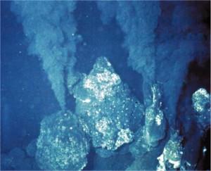 питаются, гидротермальных, вокруг, животных, Глубинное, море, является, источники, гидротермальные, видов, поверхности, мира, источников, очередь, здесь, образом, Растения, знаем