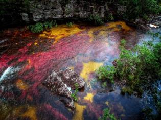 Каньо-Кристалес - разноцветная река в Колумбии фото