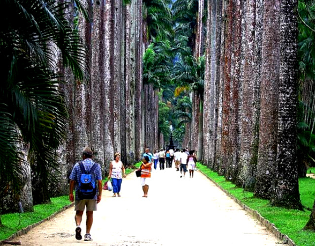 Поездка в Рио-де-Жанейро ассоциируется с отдыхом на берегу Атлантического океана