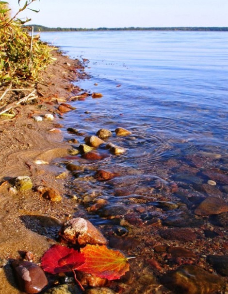 озеро селигер,озеро селигер отдых,озеро селигер фото,где озеро селигер