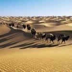 Сокровищница пустыни