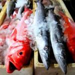 Рыбный рынок на Бали в Джимбаране