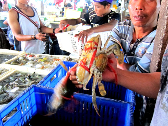 морепродукты на бали,рыбный рынок на бали,балийская кухня,рынок рыбной продукции,рынок рыбных товаров
