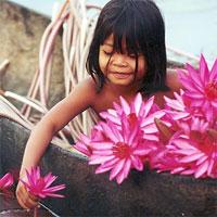 Страна Камбоджа,где камбоджа,города камбоджи