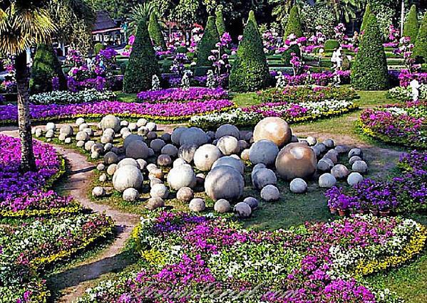 Сад Нонг Нуч , сады Тайланда, цветы Тайланда