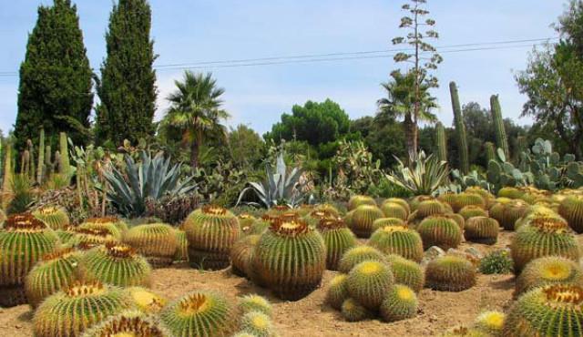 Экскурсии в Коста Брава: Испания во всей красе